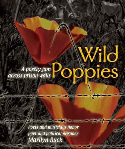 Wild Poppies CD cover